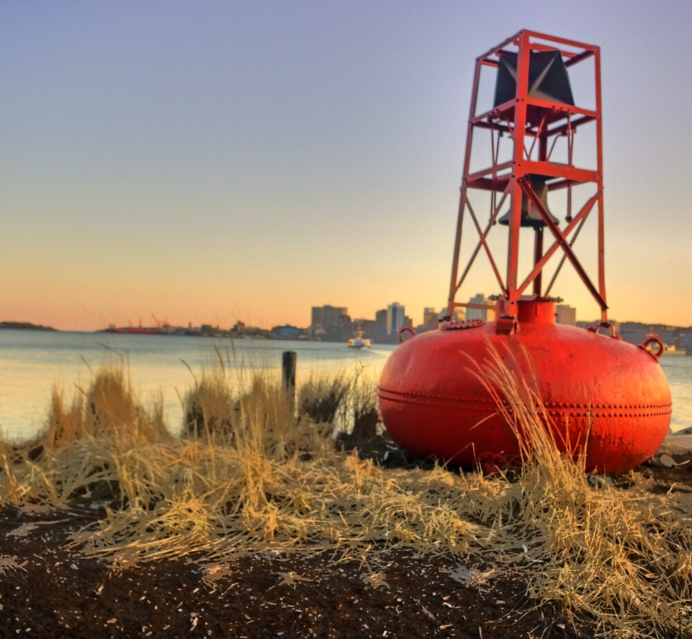 Buoy on the Dartmouth Shore by Cameron  Allen Lamond