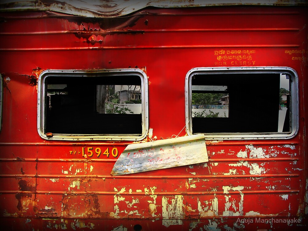 Aftermath (tv15940) by Anuja Manchanayake