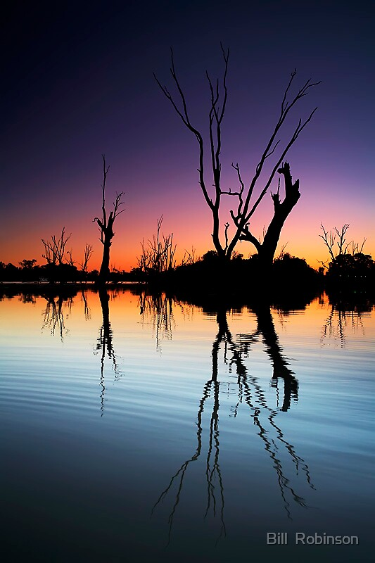 Murray River Lagoon Sunset by Bill  Robinson