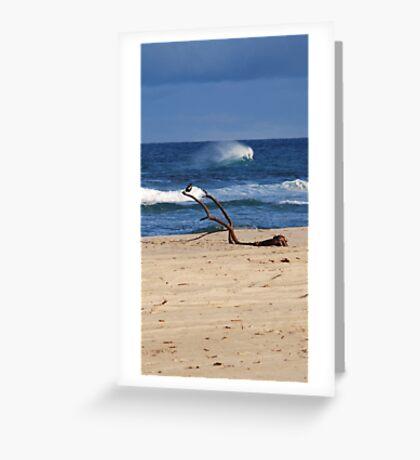 Bird on a Seaside Branch Greeting Card