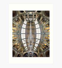Natural History Museum, London Art Print
