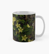 Primrose, Drumlamph Wood, County Derry Mug