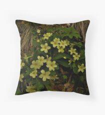 Primrose, Drumlamph Wood, County Derry Throw Pillow