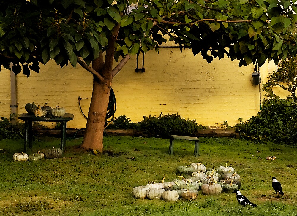 Garden along the riverbank at Bright, Victoria.  by holly36