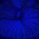 Brilliant Blue by Sue Cotton