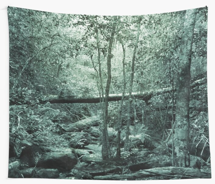 Quot Sunrise Forest Quot Wall Tapestries By Daniel Ranger Redbubble