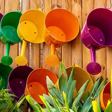 Watering Cans by cdonohoue