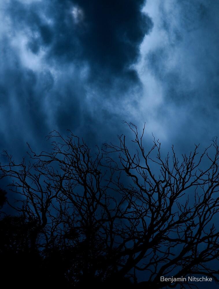 Cold, Dead by Benjamin Nitschke
