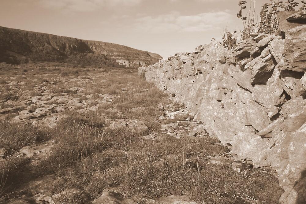 Burren limestone wall by John Quinn
