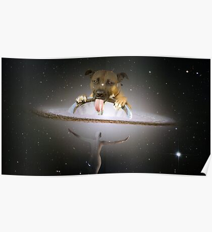 Drinking Dog Constellation Poster