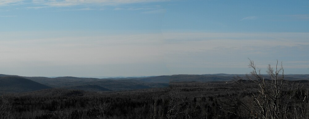 A View of Vermont's Green Mountains from New hampshire by EMElman