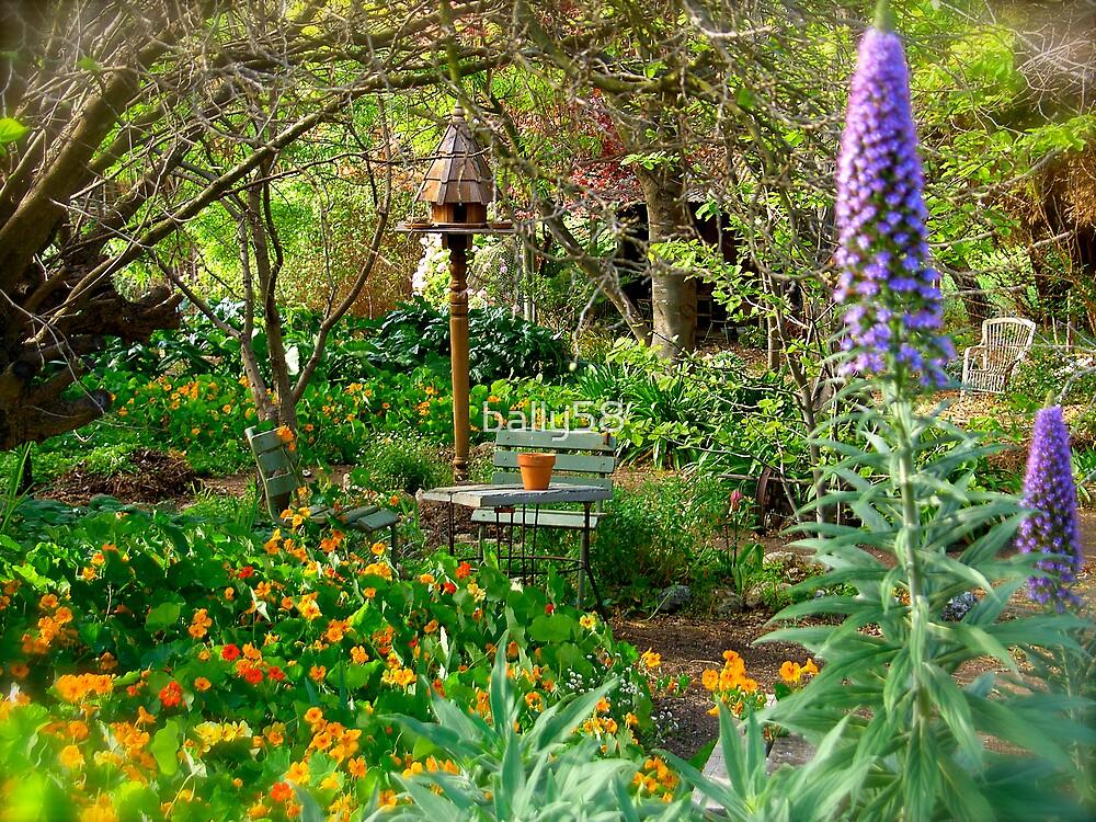 Spring colour by bally58