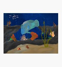 Humphead Wrasse Photographic Print