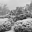 Henry Clay Estate Snow Day by monochrome
