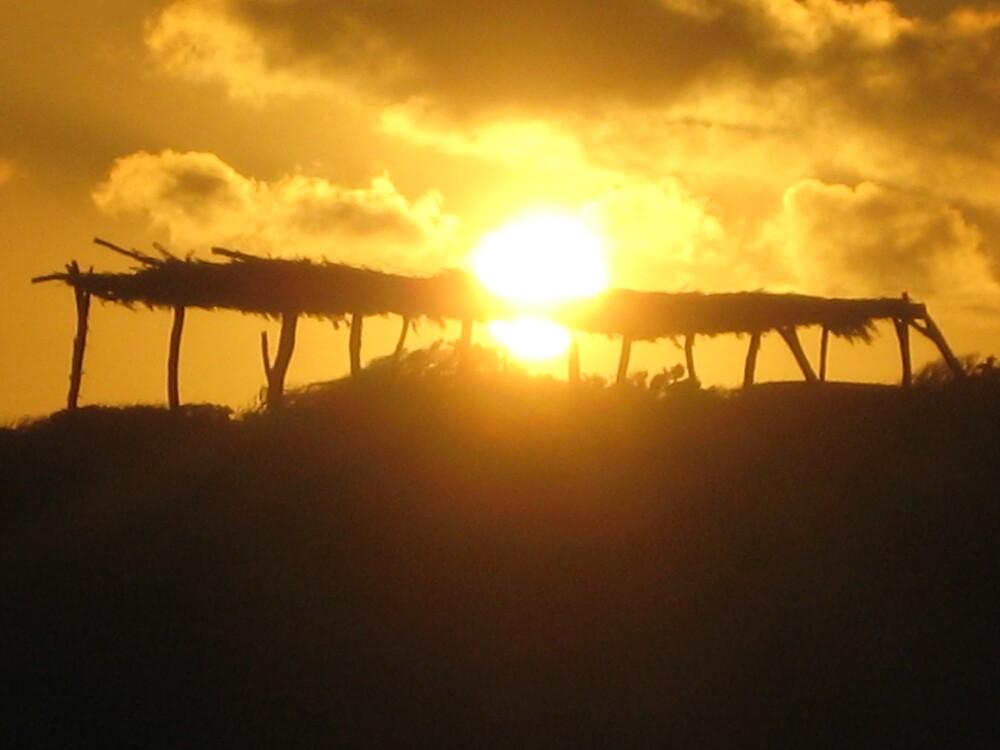 sunset shack by wilde-child