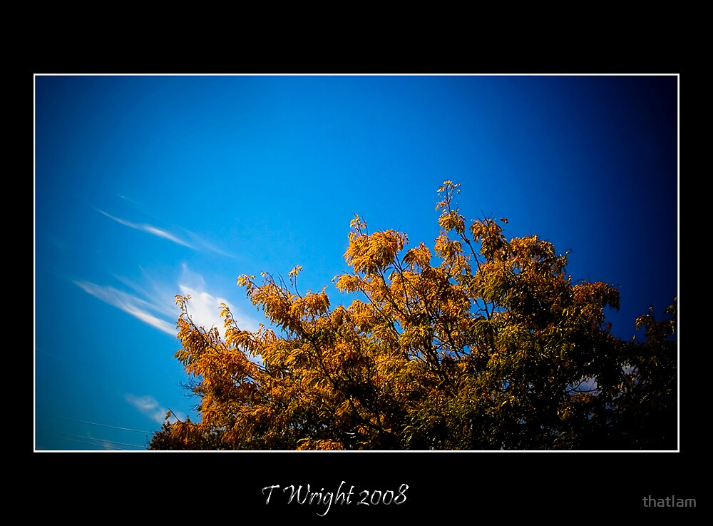 Autumn Sky by thatIam