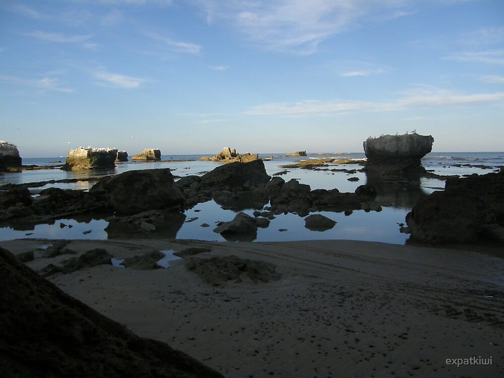 On the way to Cape Kidnappers - Black Reef, Hawke Bay by expatkiwi