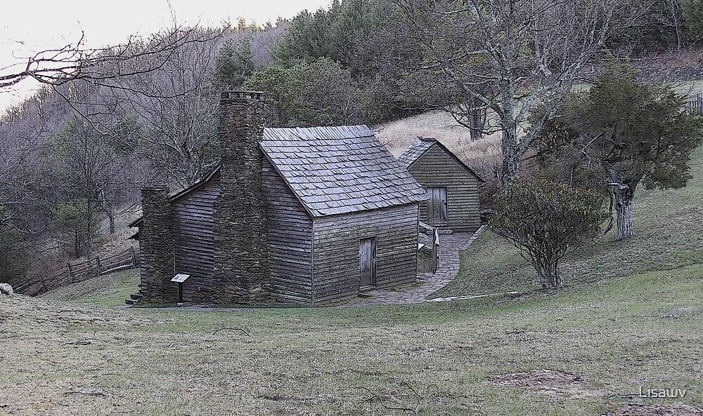 Brinegar Cabin  by Lisawv