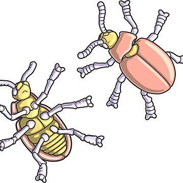 Beetle Morphology Illustration - Entomology, Coleoptera Diagram by taylorcustom