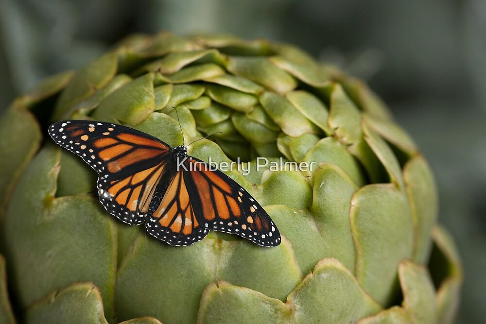 artichoke and monarch by Kimberly Palmer