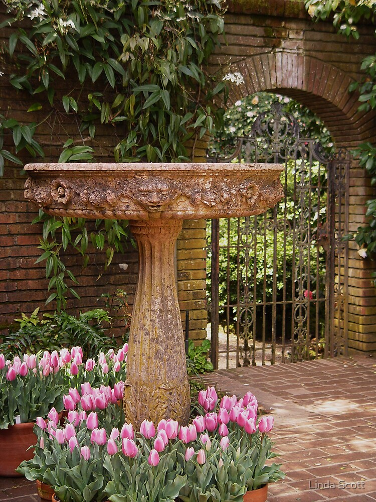 Fountain Garden Gate and Tulips by Linda Scott