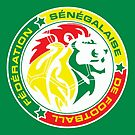 The Senegalese Football Federation by senegalatrussia