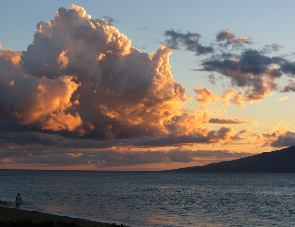 After the storm-Maui by Tony Dempsey