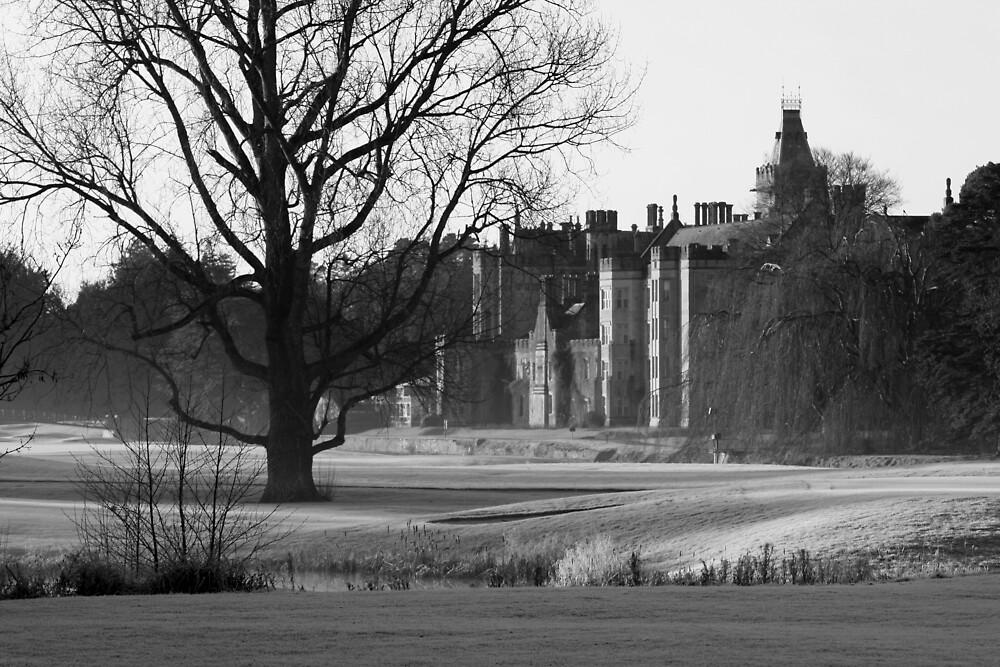 Adare Manor by John Quinn