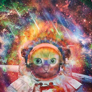 Catstronaut by JoeyKnuckles