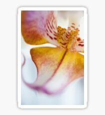 Orchid Petal Sticker