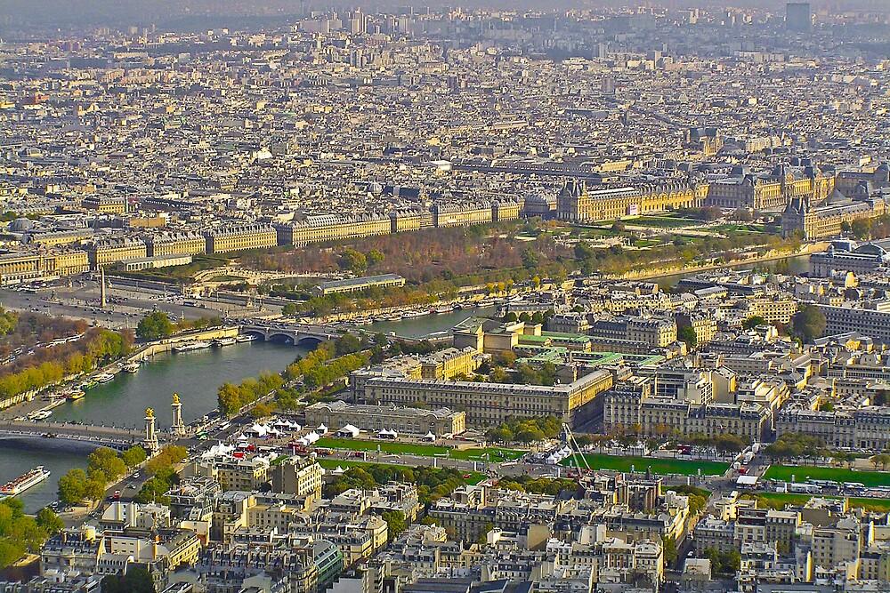 Parisian Aerial Cityscape by Steve Rhodes