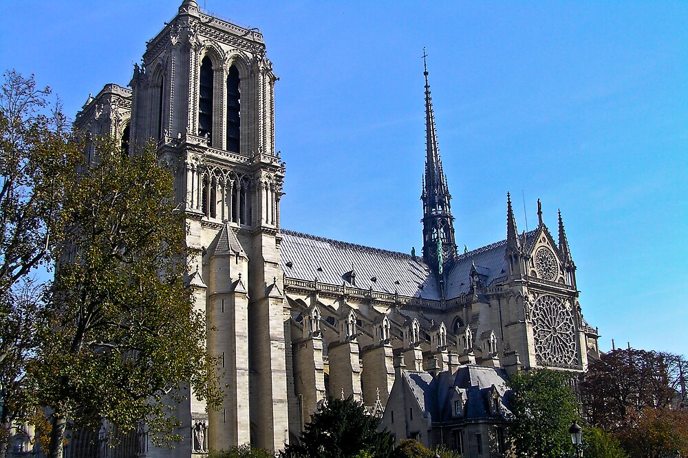 Notre Dame by Steve Rhodes