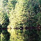Buntzen Lake by ubumebme