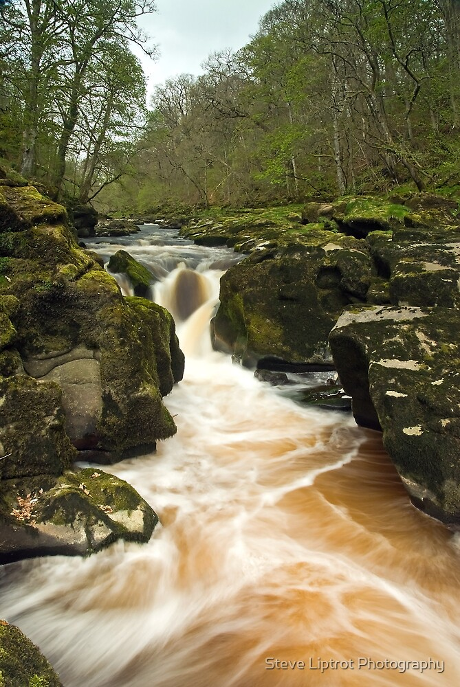 The Strid by Stephen Liptrot