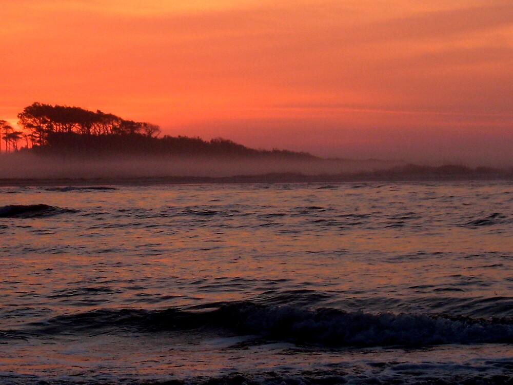 Waites Island Dawn by doctorharrison