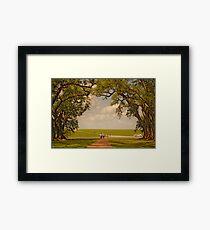 Oak Alley Plantation Framed Print