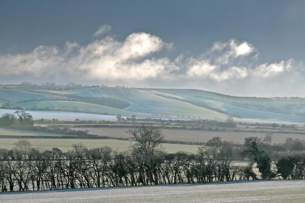 Chiltern Winter by Geoff Spivey
