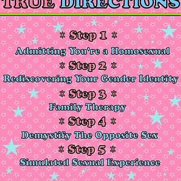 True Directions (But I'm a Cheerleader) by Faction