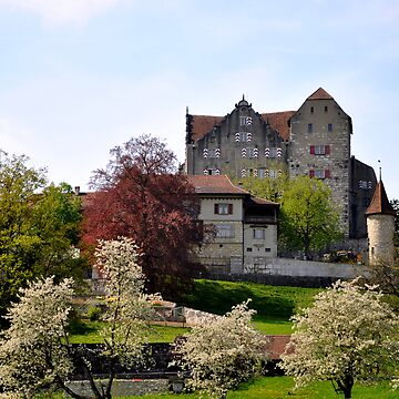 Castle Wildegg at Spring by caladia