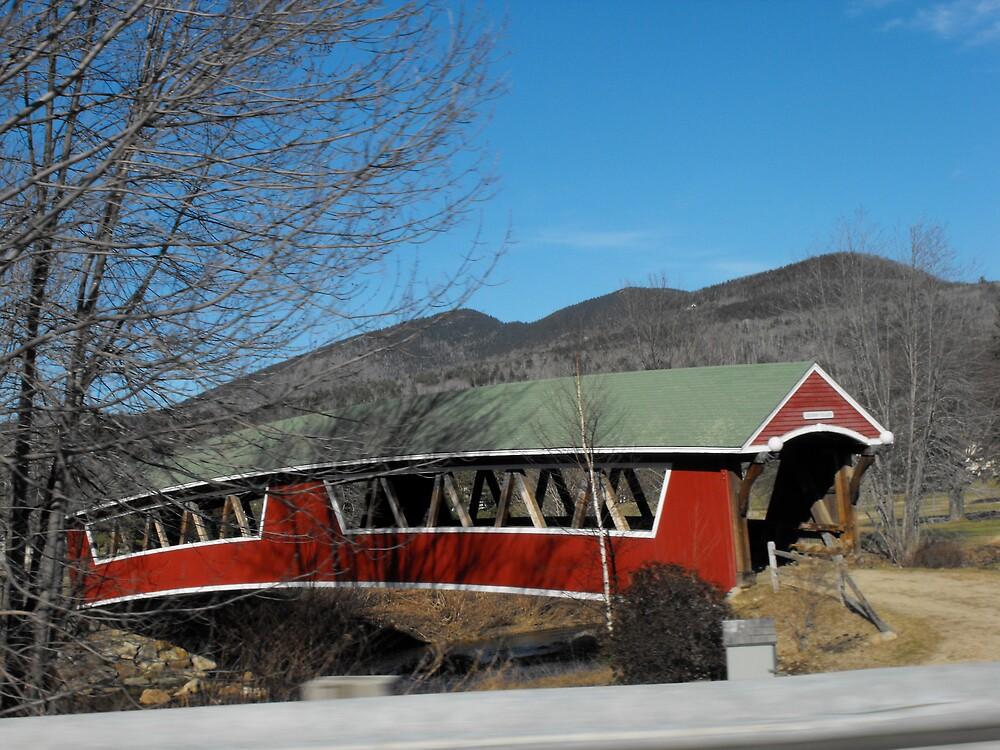 Covered Bridge, Maine by EMElman