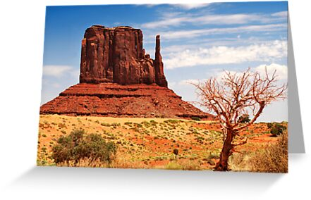 Monument Mitten by Gregory Ballos