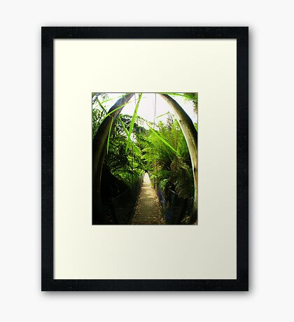 Walk this way... Framed Print