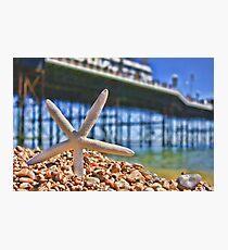 Summer in Brighton, England Photographic Print