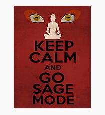 sage mode poster Photographic Print