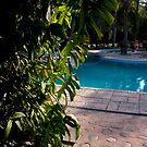 Pool by Sally Sloley