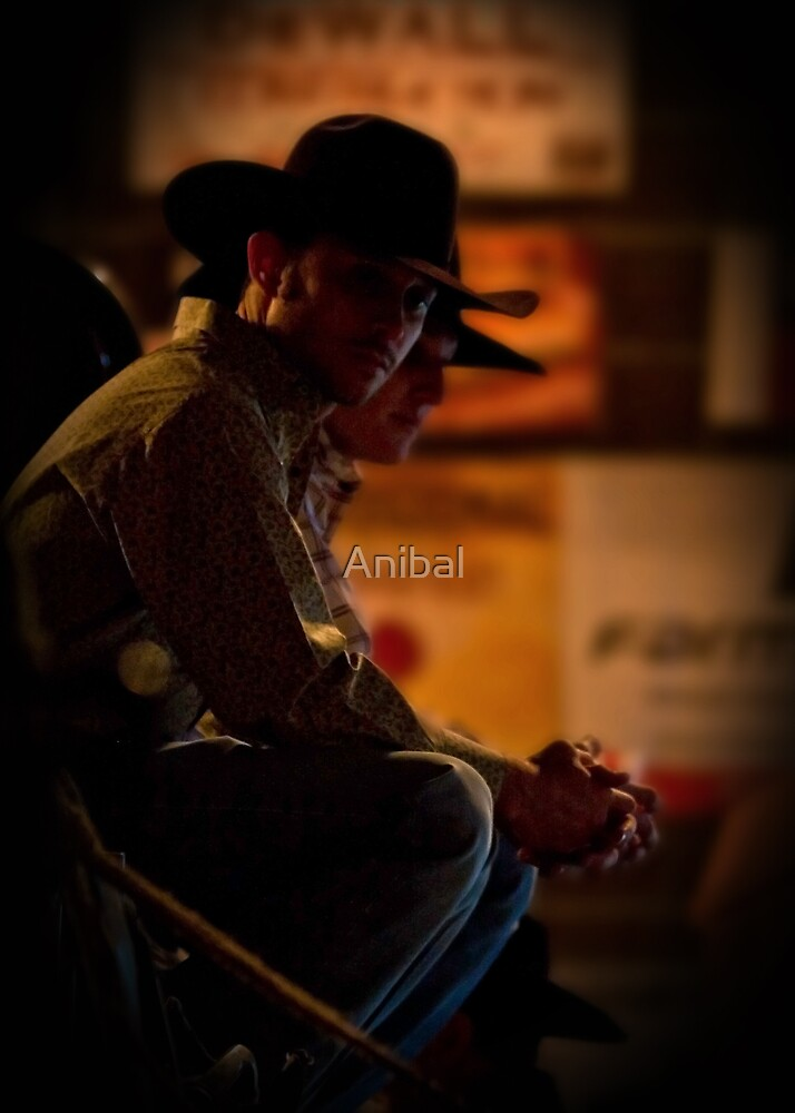 Save a Horse... Ride a Cowboy by Anibal