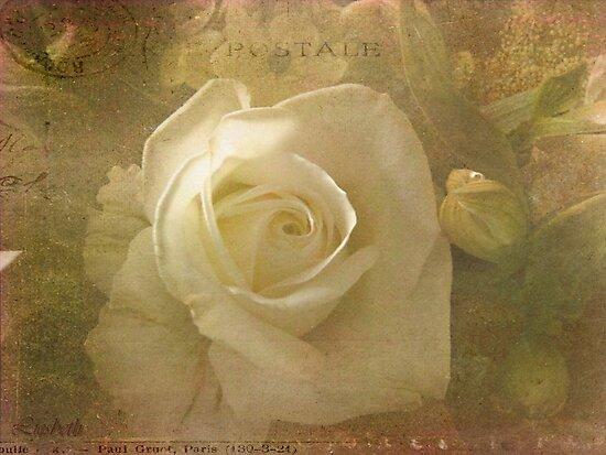 Old love by liesbeth
