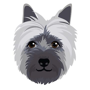 'Dougie' the Cairn Terrier by giddyaunt