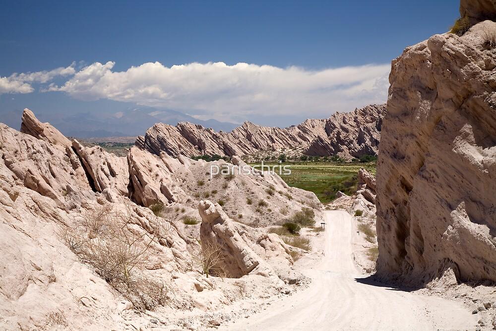 Route 40, Salta Province, Argentina (landscape) by parischris