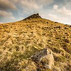 The Crest of Crook Hill by Angie Morton